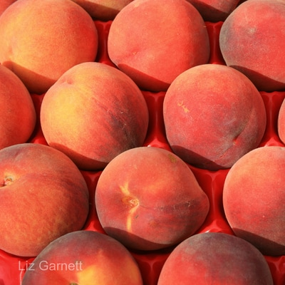 Display of peaches on market stall in France by Liz Garnett