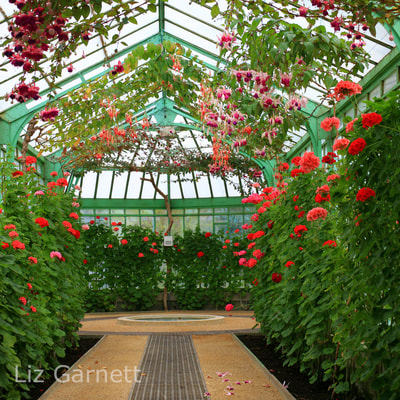 professional interiors photography by Liz Garnett of walkway in the glasshouses at the Royal Palace at Laeken, Brussels, Belgium